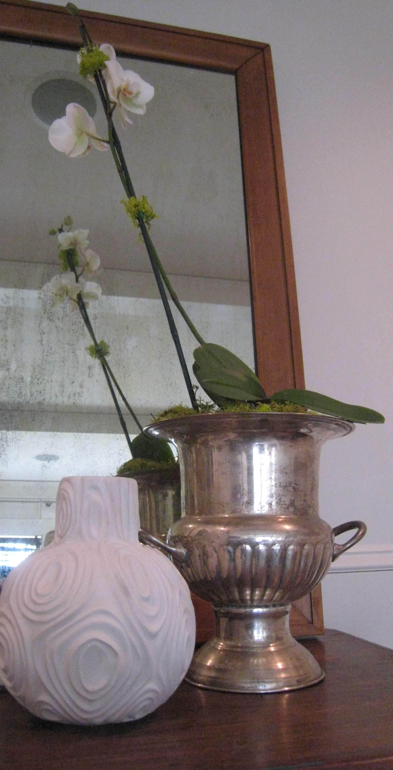 Champagne Bucket Orchid Pot Our Blog