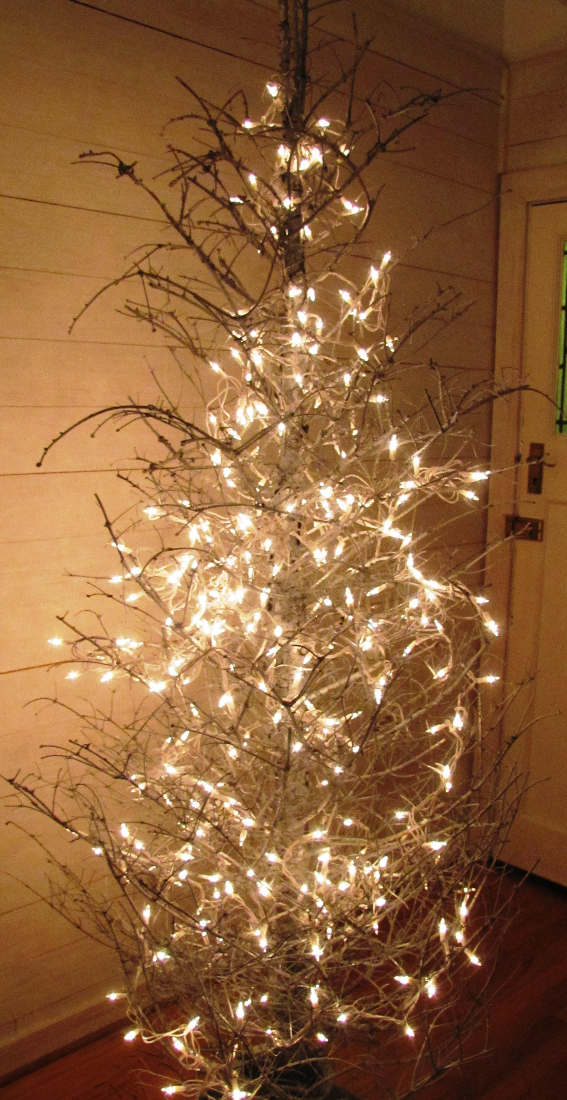 Christmas Tree…again… again… again | Our Blog